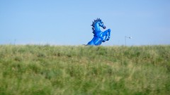 Weird blue horse @ the airport (howsmystockdoing) Tags: rockies golden grandcanyon denver boulder redrocks moab rockymountains glencanyon canyonland potashpond
