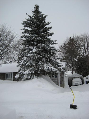 WINTER-2008 065