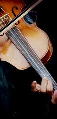 (bekkchen) Tags: music hand finger dirt violin string musik schmutz violine geige sehne geigenspieler