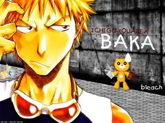 Ichigo You are a Baka