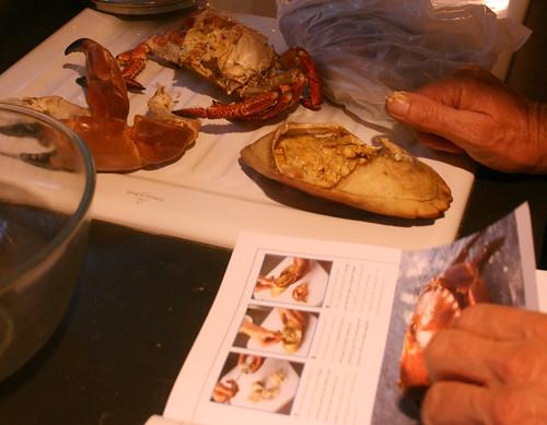 Crab study