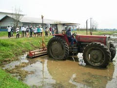 Harrowing in flooded condition with a wooden plank, rotovator wide puddler mounted behind a tractor with attached laser leveler (IRRI Images) Tags: training rice trainees harrowing handtractor riceproduction laserleveler