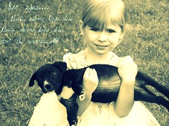 cute much? (peace.love.courtney.) Tags: dog picnik hereyes