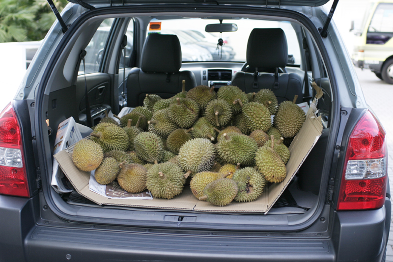 Durian Party