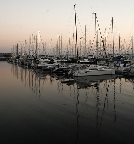 Smith cove marina