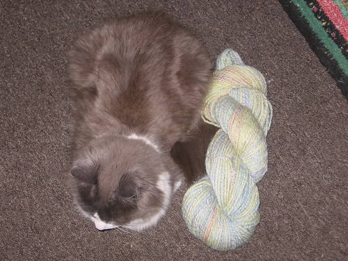 lily and yarn