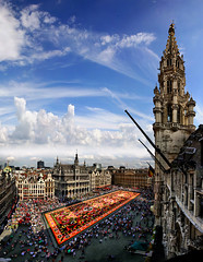 Shadow of the city hall on the carpet flower, Great Market, Brussels, Belgium (Batistini Gaston) Tags: brussels panorama belgium belgique belgie grandplace bruxelles 2008 brussel stitched grotemarkt batistini greatmarket tapisdefleurs vertorama gbatistini carpetflowers canon5dmkii batistinigaston