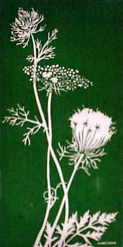 Marushka - Queen Anne's lace (green and white)