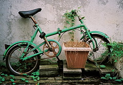 (isado) Tags: green bike bicycle japan mine yamaguchi canonaf35ml