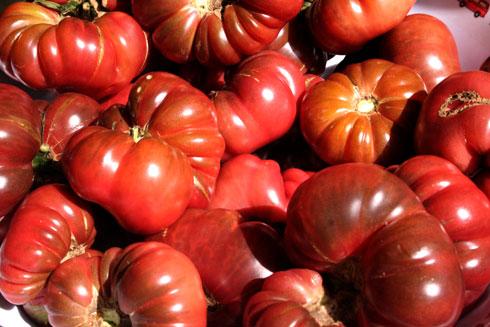 Purple Calabash tomatoes