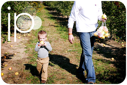 Klackle's Orchard - 2008