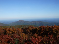 2008 october AT trail 211 (Skyland, Virginia, United States) Photo