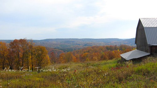 Autumn Adirondacks 3
