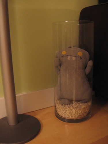 Babo in a vase, hiding the outlets