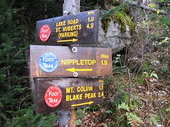 Nippletop - Colvin junction (Saint Huberts, New York, United States) Photo