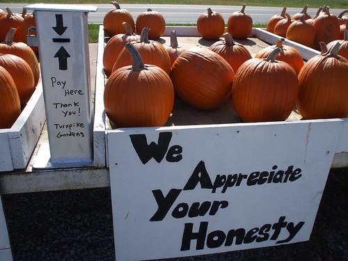 pumpkin stand 013