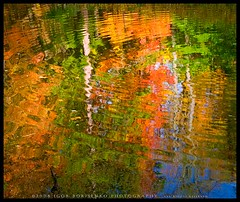 Abstract Fall Reflections (:: Igor Borisenko Photography ::) Tags: park autumn trees red sky orange white ny abstract green fall nature water colors leaves yellow reflections gold pond colorful quality vivid foliage letchworth allrightsreserved westernnewyork highquality likeapainting mywinners aplusphoto igorb81 nikod80 igorborisenkophotography