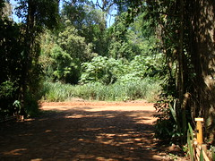 La Aldea de la Selva Lodge & Spa (iguazuinfo) Tags: 3 argentina forest stars puerto four cuatro star hotel three sleep 4 selva falls lodge 600 estrellas cataratas tres accommodation dormir spa estrella iguazu stay iguacu misiones iguassu iguaz alojamiento tresestrellas iguazufalls threestar aldea fourstar laaldea iguazfalls cataratasdeiguazu puertoiguazu cataratasdeliguaz cataratasdeiguaz puertoiguaz hectreas cataratasdeliguazu hectares hectareas cuatroestrellas alojar laaldeadelaselva 600hectareas 600hectreas 600hectares aldeadelaselva iryapu iryapuforest iryap iryapforest selvairyapu selvairyap
