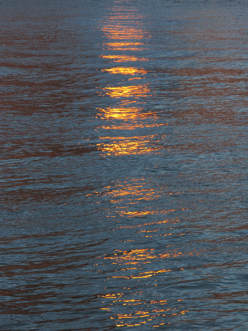 sunset sunlight reflects on the surface of the Hudson River, NYC