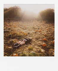 (WOLF CHOIR) Tags: sunlight fall beautiful oregon pumpkin dead polaroid amazing cool boots great skirt 600 lensflare chic sauvieisland visualcandies