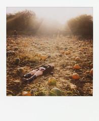 (WOLF CHOIR) Tags: sunlight fall beautiful oregon pumpkin dead polaroid amazing cool boots great skirt 600 lensflare chic sauvieisland visualcandies