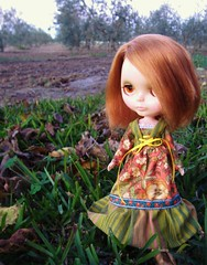 Autumn Rachel... (Blythemaniaco) Tags: winter fashion vintage doll dress country moda redhead 70s campo kenner blythe miss 1972 takes seventies pelirroja vestido muñeca setentas misstakes invienrno misstakers