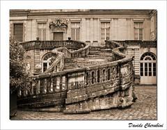 Scala dell'addio (Davide Cherubini) Tags: france stair escalera chapeau napoleon scala francia escalier fontainebleau blueribbonwinner cherubini napoleone aplusphoto infinestyle dcherubini multimegashot davidecherubini