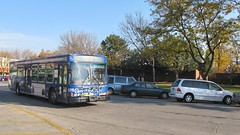 Pace bus rounding the Conti Parkway Circle. Elmwood Park Illinois. Early November 2008.