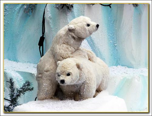 osos de juguete