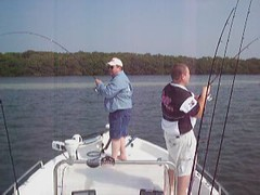 Redfish April Tampa Bay Movie Double Hookup (capt.markwgore) Tags: movie redfish