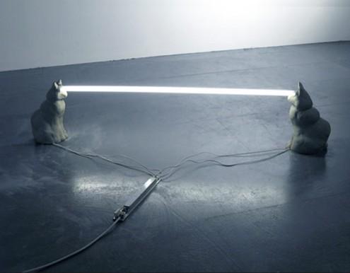 12staringcats-495x386