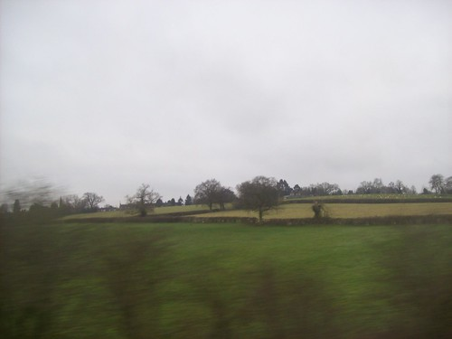 I wanted to take a picture of the countryside that Shakespeare saw. The train didnt afford me the best shot, but some of the forests I passed did let me imagine Willy S riding around on a big horse while wearing silly tights.