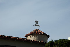 In a nautical vane (Robert Ogilvie) Tags: weathervane foundinsf