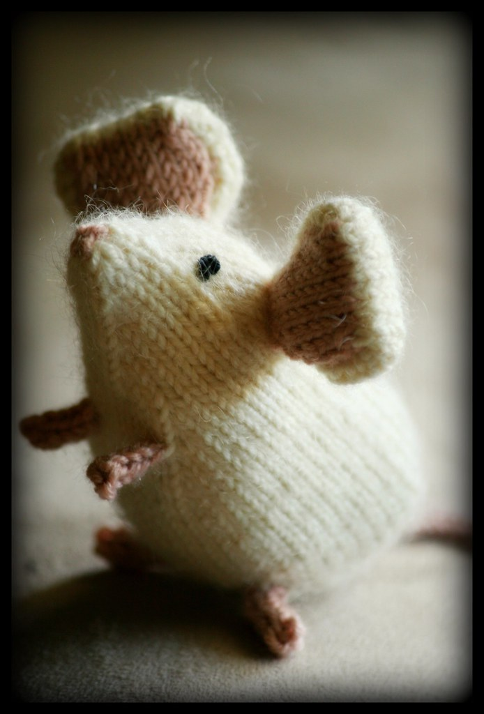 Never Not Knitting February 2009