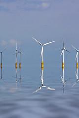 wind farm (Leo Reynolds) Tags: canon eos iso100 wind farm 300mm f80 turbine windturbine windfarm 40d floodfilter hpexif 0002sec leol30random grouptwtme xratio23x xleol30x