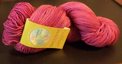 Dream in Color - Smooshy - Punky Fuschia
