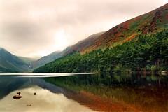 Glendalough Lake - Ireland (tigrić) Tags: autumn ireland panorama lake reflection nature water landscape europe lakes glendalough flickrstruereflectionexcellence