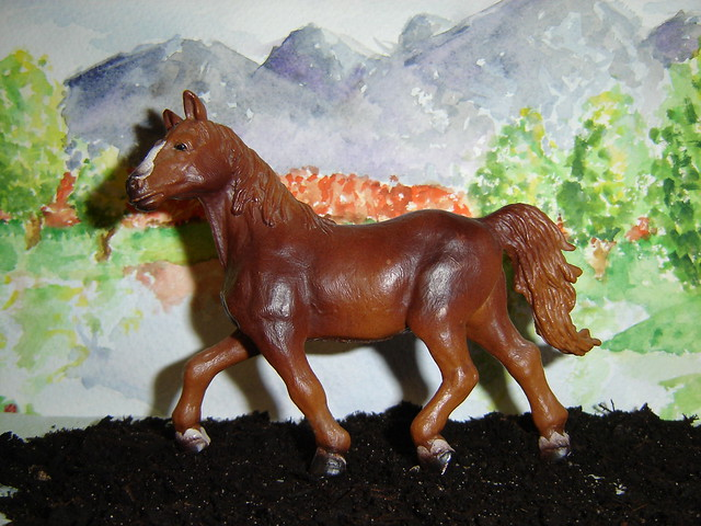 Siobhan's Schleich additions! 2753876533_e14f2afccd_z