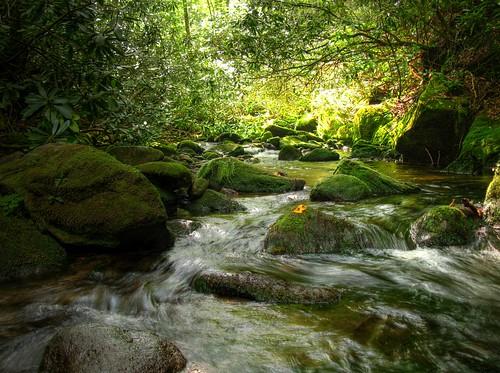A River Runs Through by you.