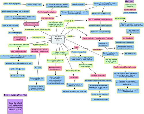 Burns Nursing Care Plan Concept Map   a photo on Flickriver