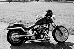 bobberz! (the.duch) Tags: blackandwhite switzerland harleydavidson hd svizzera aargau fatboy biancoenero 1340 bobber seengen flstf eos400d bigtwin custombobber bicilindricobobberbobber