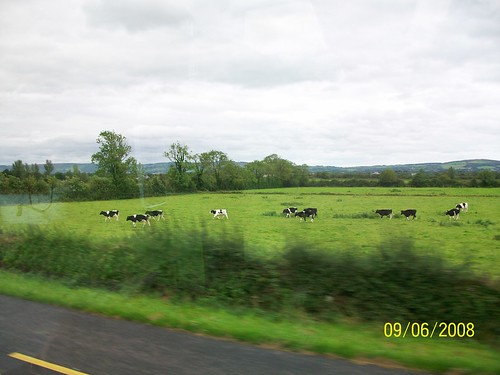Ireland - on the road from Adare to Tralee