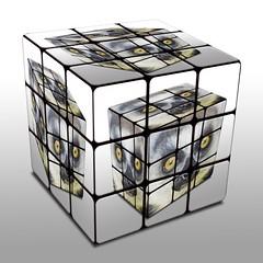 Cube in Cube (Piero Gentili) Tags: rubiks gentili dumpr piero20051 pierogentili gentilipiero pierpaologentili