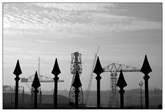 Speared Swans (padraicyclops) Tags: england bw landscape blackwhite nikon industrial fineart documentary cranes shipyard railings speared decapitated rivertyne wallsend swanhunter acryingshame thegreencrane