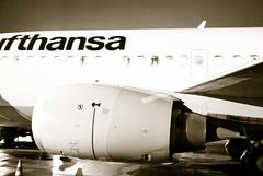 Lufthansa after 5 hours waiting (bellyanz1) Tags: uk paris london amsterdam newcastle airplane airport europe frankfurt poland warsaw osaka katowice lufthansa pyrzowice kielce polad mierzcice lskie
