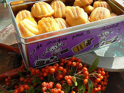 boîte de madeleines.jpg