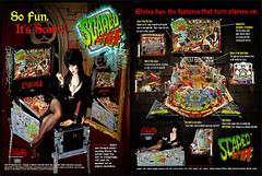 Scared Stiff pinball flyer