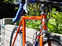 2004 DeRosa Neo Primato (bicycle3942) Tags: classic steel neo derosa campagnolo chromed lugged primato molteni