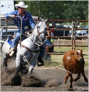 REAL Alberta Cowboy