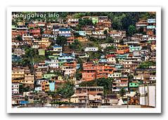 Angra dos Reis, Brasil (Tony Glvez) Tags: brasil brazil angradosreis hdr favela crimenambiental delitoecologico environmentalcrime deforestacion des